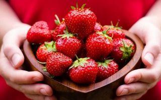 Вред и польза клубники при панкреатите