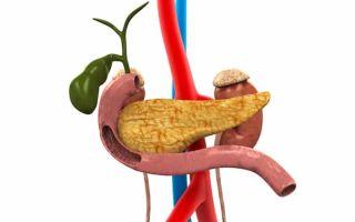 Где в организме человека находится поджелудочная железа?