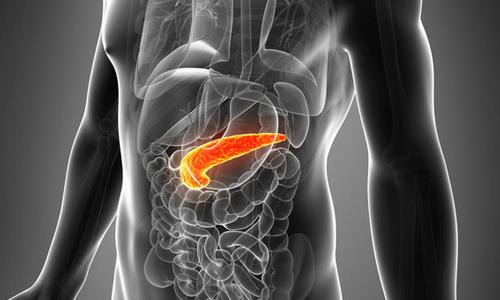 Проблема диффузных изменений поджелудочной железы