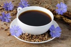 Польза напитка цикория при панкреатите