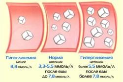 Норма сахара в крови и отклонения