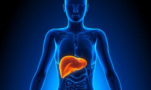 Проблема хронического калькулезного панкреатита