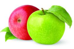 Добавление яблок в творог при панкреатите