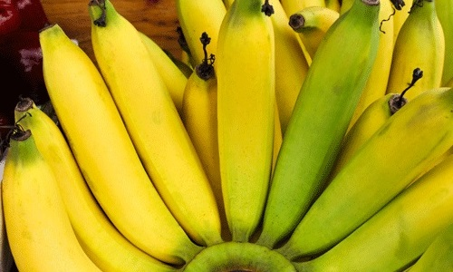 Бананы при панкреатите нужно есть осторожно, поскольку плод может принести вред организму человека, это зависит от стадии заболевания и степени поражения органа