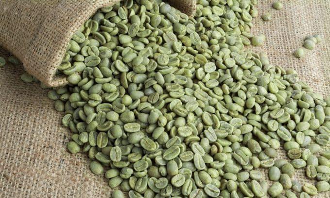 Хорошей альтернативой для тех, кто по состоянию здоровья не может пить черный кофе является зеленый кофе