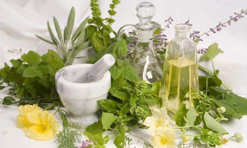 Применение некоторых лекарственных растений благоприятно влияет на состояние поджелудочной