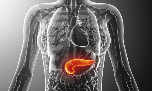 Болезни поджелудочной железы относятся к числу наиболее распространенных патологий, возникающих в организме человека