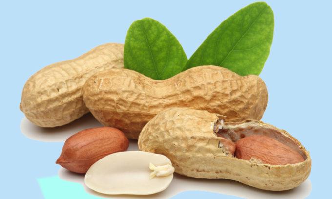 Арахис полностью исключается из рациона больных панкреатитом, что объясняется его принадлежностью не к орехам, а к семейству бобовых
